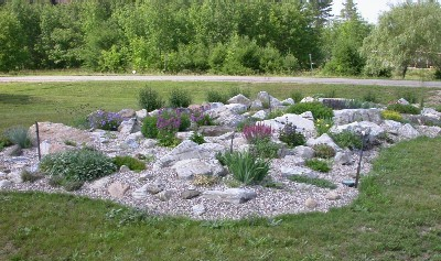 Garden Design Garden Design with Plants to Use in Rock Gardens – Rock Garden Plants
